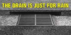 The Drain Is Just for Rain